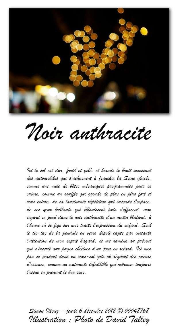 http://img526.imageshack.us/img526/9171/noiranthracite.jpg